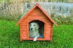 Hundehütte Natura mit Giebeldach, 83×87×101 cm